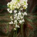 bride.bouquet.2