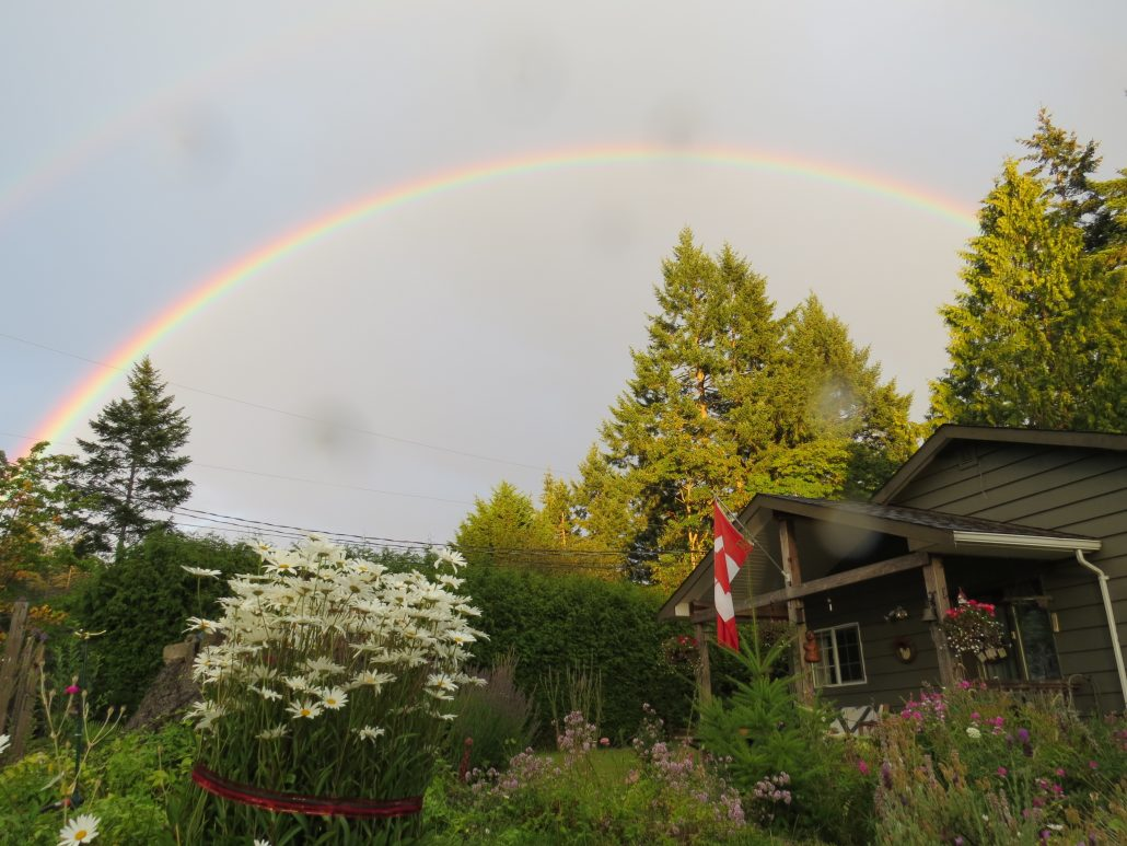 Somewhere over the rainbow is a house full of books, waiting for you!