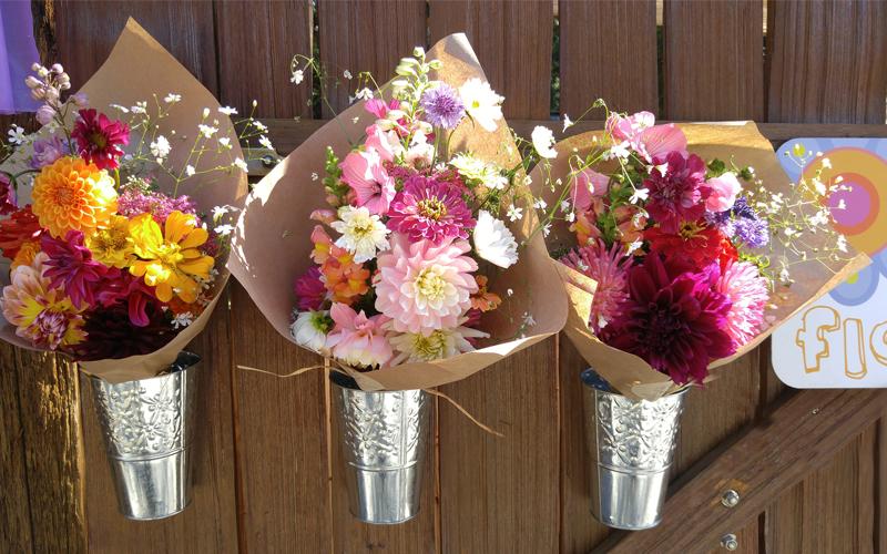 alchemy-farm-studio-gardens-bouquets